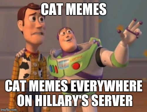 X, X Everywhere Meme | CAT MEMES CAT MEMES EVERYWHERE ON HILLARY'S SERVER | image tagged in memes,x,x everywhere,x x everywhere | made w/ Imgflip meme maker