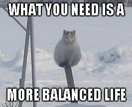 WHAT YOU NEED IS A MORE BALANCED LIFE | made w/ Imgflip meme maker