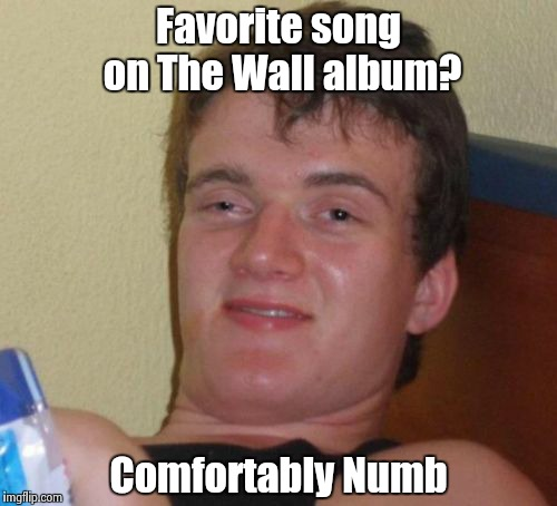 10 Guy Meme | Favorite song on The Wall album? Comfortably Numb | image tagged in memes,10 guy | made w/ Imgflip meme maker