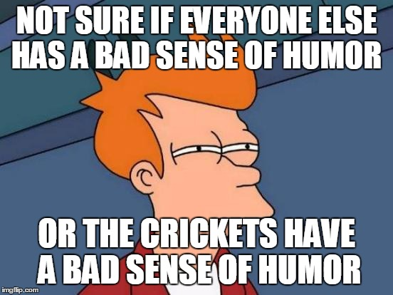 Futurama Fry Meme | NOT SURE IF EVERYONE ELSE HAS A BAD SENSE OF HUMOR OR THE CRICKETS HAVE A BAD SENSE OF HUMOR | image tagged in memes,futurama fry | made w/ Imgflip meme maker