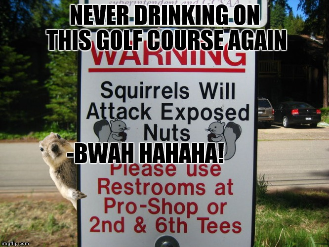 Throwing my hat in the sign ring :) | NEVER DRINKING ON THIS GOLF COURSE AGAIN -BWAH HAHAHA! | image tagged in signs,funny signs,squirrel,squirrels,pee,funny | made w/ Imgflip meme maker