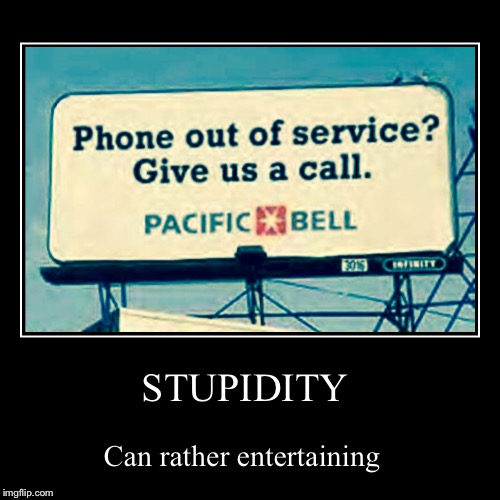STUPIDITY | Can rather entertaining | image tagged in funny,demotivationals | made w/ Imgflip demotivational maker