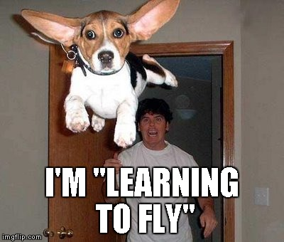 "I'M ""LEARNING TO FLY"" 