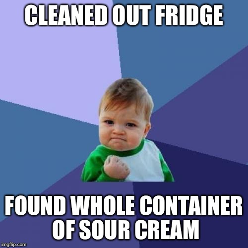 Success Kid Meme | CLEANED OUT FRIDGE FOUND WHOLE CONTAINER OF SOUR CREAM | image tagged in memes,success kid | made w/ Imgflip meme maker