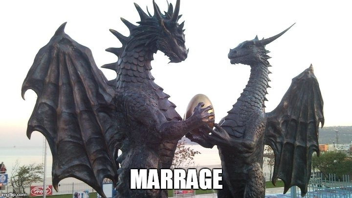 dragon couple | MARRAGE | image tagged in dragon couple | made w/ Imgflip meme maker