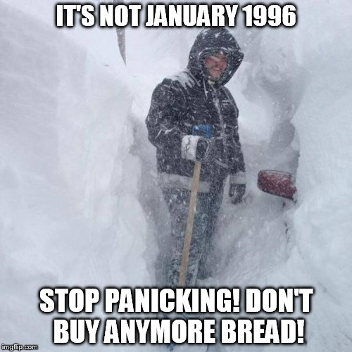 SNOW!!! | IT'S NOT JANUARY 1996 STOP PANICKING! DON'T BUY ANYMORE BREAD! | image tagged in snow | made w/ Imgflip meme maker