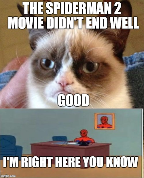 Grumpy Cat Meme | THE SPIDERMAN 2 MOVIE DIDN'T END WELL GOOD I'M RIGHT HERE YOU KNOW | image tagged in memes,grumpy cat | made w/ Imgflip meme maker