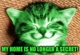 happy RayCat | MY HOME IS NO LONGER A SECRET! | image tagged in happy raycat | made w/ Imgflip meme maker