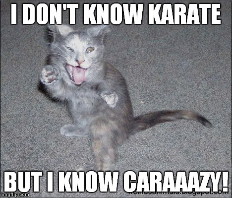 I DON'T KNOW KARATE BUT I KNOW CARAAAZY! | made w/ Imgflip meme maker