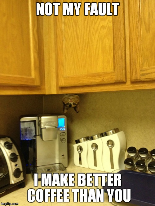 NOT MY FAULT I MAKE BETTER COFFEE THAN YOU | made w/ Imgflip meme maker
