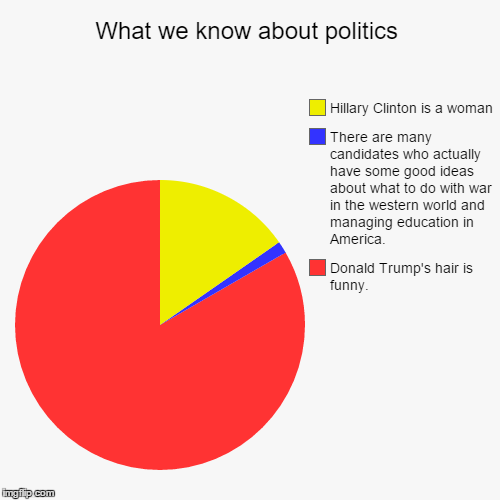 What we know about politics | Donald Trump's hair is funny., There are many candidates who actually have some good ideas about what to do wi | image tagged in funny,pie charts | made w/ Imgflip pie chart maker