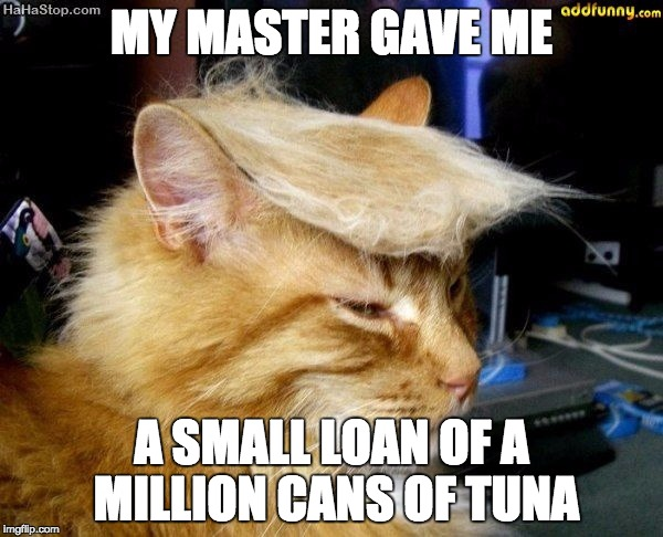 donald trump cat |  MY MASTER GAVE ME; A SMALL LOAN OF A MILLION CANS OF TUNA | image tagged in donald trump cat | made w/ Imgflip meme maker
