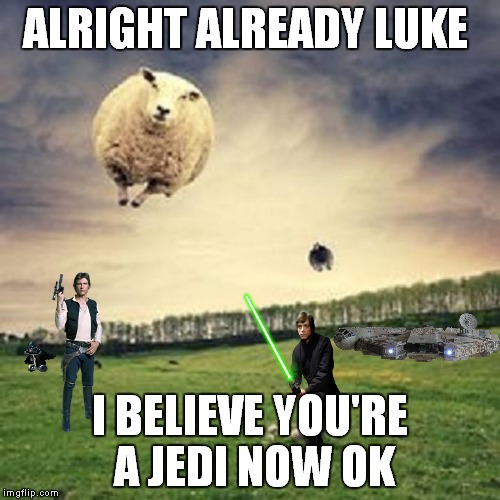 Counting sheep with the force! | ALRIGHT ALREADY LUKE I BELIEVE YOU'RE A JEDI NOW OK | image tagged in star wars,han solo,luke skywalker,vader,sheep | made w/ Imgflip meme maker