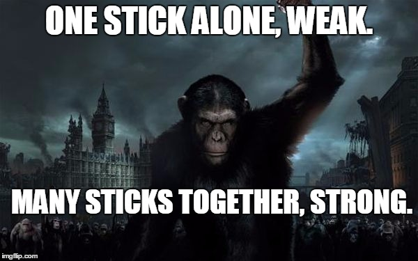 ONE STICK ALONE, WEAK. MANY STICKS TOGETHER, STRONG. | image tagged in planetoftheapes | made w/ Imgflip meme maker