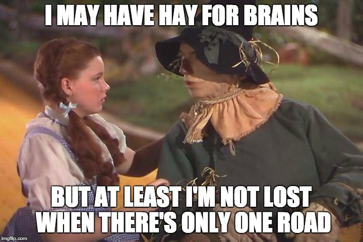 Dorothy and scarecrow | I MAY HAVE HAY FOR BRAINS BUT AT LEAST I'M NOT LOST WHEN THERE'S ONLY ONE ROAD | image tagged in dorothy and scarecrow | made w/ Imgflip meme maker