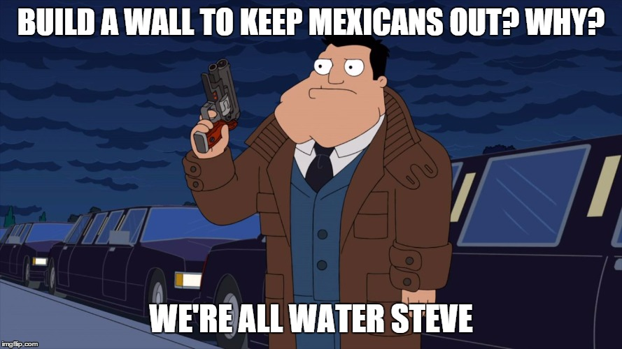 we're all water steve | BUILD A WALL TO KEEP MEXICANS OUT? WHY? WE'RE ALL WATER STEVE | image tagged in we're all water steve,but thats none of my business,the rock driving,pie charts,original,succesful black man | made w/ Imgflip meme maker