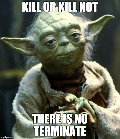 Star Wars Yoda Meme | KILL OR KILL NOT THERE IS NO TERMINATE | image tagged in memes,star wars yoda | made w/ Imgflip meme maker