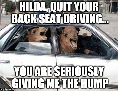 Quit Hatin | HILDA, QUIT YOUR BACK SEAT DRIVING... YOU ARE SERIOUSLY GIVING ME THE HUMP | image tagged in memes,quit hatin | made w/ Imgflip meme maker