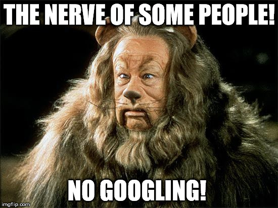 cowardly lion | THE NERVE OF SOME PEOPLE! NO GOOGLING! | image tagged in cowardly lion | made w/ Imgflip meme maker