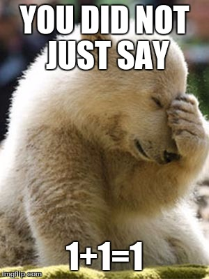 Facepalm Bear |  YOU DID NOT JUST SAY; 1+1=1 | image tagged in memes,facepalm bear | made w/ Imgflip meme maker