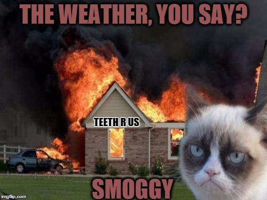 THE WEATHER, YOU SAY? SMOGGY TEETH R US | made w/ Imgflip meme maker
