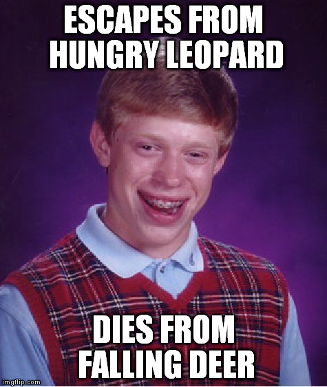 Bad Luck Brian Meme | ESCAPES FROM HUNGRY LEOPARD DIES FROM FALLING DEER | image tagged in memes,bad luck brian | made w/ Imgflip meme maker