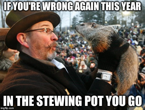 Punxsutawney Phil | IF YOU'RE WRONG AGAIN THIS YEAR IN THE STEWING POT YOU GO | image tagged in punxsutawney phil | made w/ Imgflip meme maker