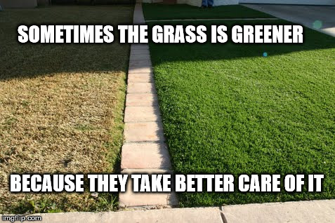 grass is greener |  SOMETIMES THE GRASS IS GREENER; BECAUSE THEY TAKE BETTER CARE OF IT | image tagged in green,memes,perspective,love | made w/ Imgflip meme maker