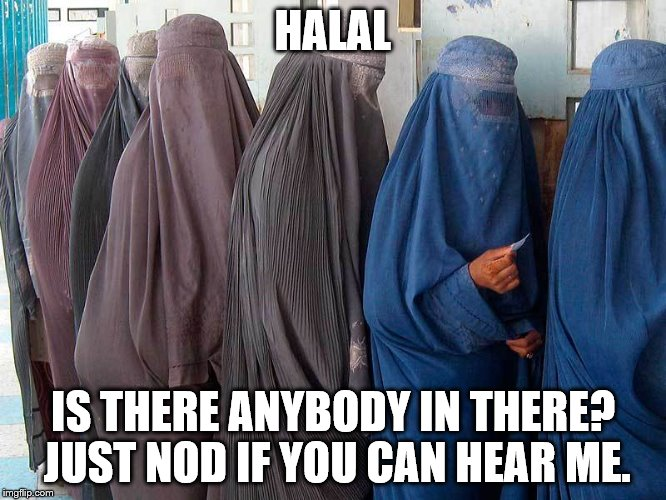 HALAL IS THERE ANYBODY IN THERE?  JUST NOD IF YOU CAN HEAR ME. | made w/ Imgflip meme maker
