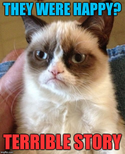 Grumpy Cat Meme | THEY WERE HAPPY? TERRIBLE STORY | image tagged in memes,grumpy cat | made w/ Imgflip meme maker