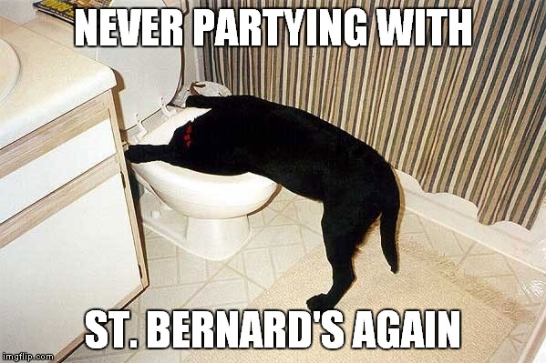 NEVER PARTYING WITH ST. BERNARD'S AGAIN | made w/ Imgflip meme maker