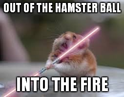 OUT OF THE HAMSTER BALL INTO THE FIRE | made w/ Imgflip meme maker
