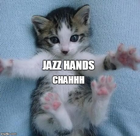 JAZZ HANDS CHAHHH | image tagged in jazz hands,kitteh,cute kitty,kitty,cute | made w/ Imgflip meme maker