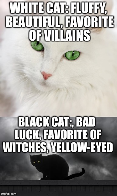 y4dro cats can be racist, too imgflip
