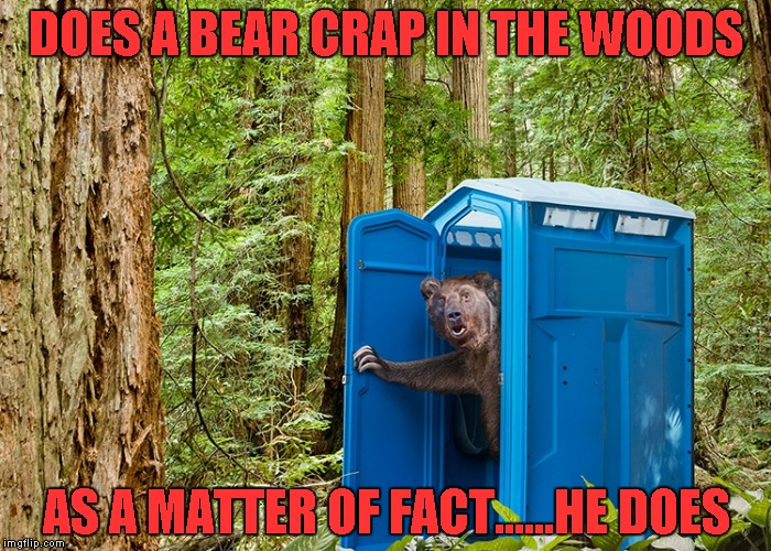 Now there's proof!!! | DOES A BEAR CRAP IN THE WOODS AS A MATTER OF FACT......HE DOES | image tagged in outhouse bear,funny animals,memes,funny,bear,outhouse | made w/ Imgflip meme maker