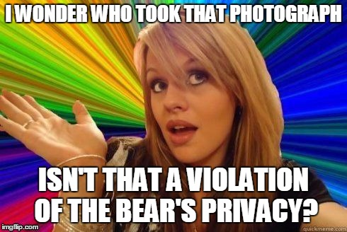 I WONDER WHO TOOK THAT PHOTOGRAPH ISN'T THAT A VIOLATION OF THE BEAR'S PRIVACY? | made w/ Imgflip meme maker