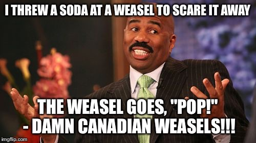 "Steve Harvey Meme | I THREW A SODA AT A WEASEL TO SCARE IT AWAY THE WEASEL GOES, ""POP!"" - DAMN CANADIAN WEASELS!!! 