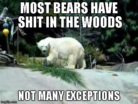 MOST BEARS HAVE SHIT IN THE WOODS NOT MANY EXCEPTIONS | made w/ Imgflip meme maker