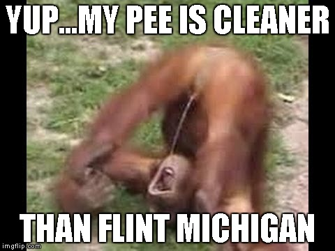 YUP...MY PEE IS CLEANER THAN FLINT MICHIGAN | made w/ Imgflip meme maker