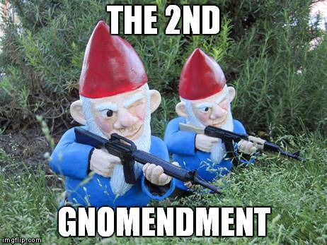THE 2ND GNOMENDMENT | made w/ Imgflip meme maker