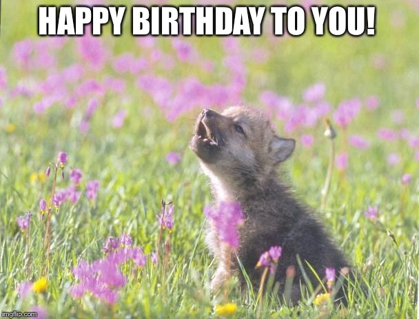 Image result for happy birthday wolf