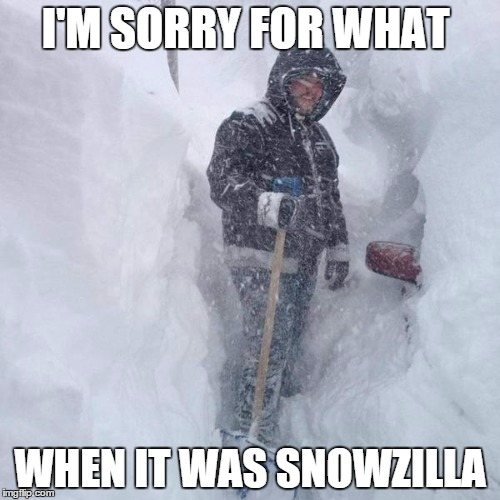 SNOW!!! | I'M SORRY FOR WHAT WHEN IT WAS SNOWZILLA | image tagged in snow | made w/ Imgflip meme maker