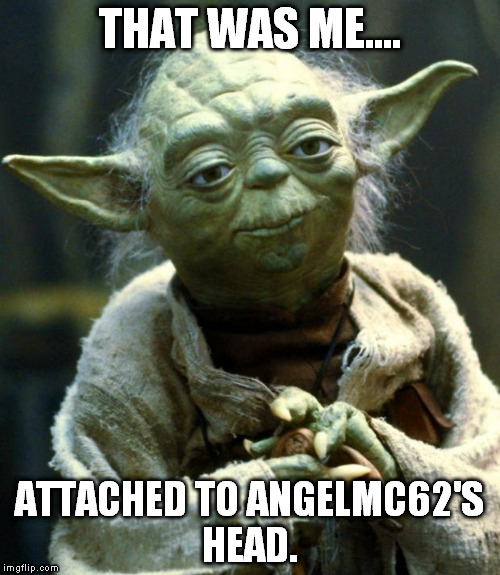 Star Wars Yoda Meme | THAT WAS ME.... ATTACHED TO ANGELMC62'S HEAD. | image tagged in memes,star wars yoda | made w/ Imgflip meme maker