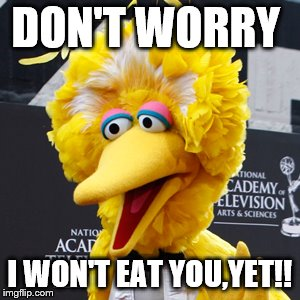 Big Bird |  DON'T WORRY; I WON'T EAT YOU,YET!! | image tagged in memes,big bird | made w/ Imgflip meme maker