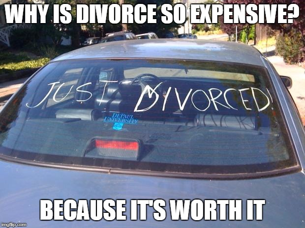 just divorced | WHY IS DIVORCE SO EXPENSIVE? BECAUSE IT'S WORTH IT | image tagged in just divorced | made w/ Imgflip meme maker