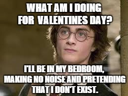 Harry Potter | WHAT AM I DOING FOR VALENTINES DAY? Iu0027LL BE IN