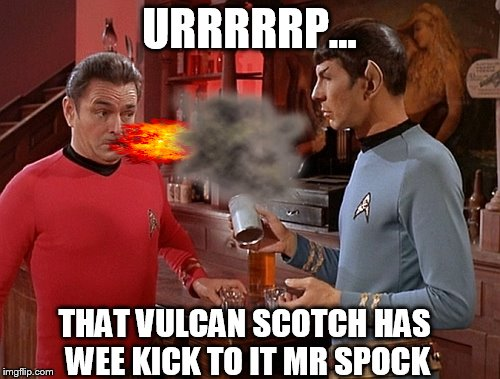 Can scotty hang??? |  URRRRRP... THAT VULCAN SCOTCH HAS WEE KICK TO IT MR SPOCK | image tagged in memes,funny,star trek,mr spock,scotty,scotch | made w/ Imgflip meme maker