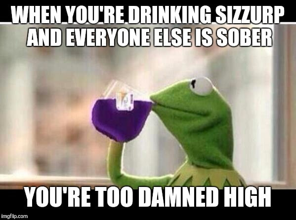 But That's None Of My Sizzurp | WHEN YOU'RE DRINKING SIZZURP AND EVERYONE ELSE IS SOBER YOU'RE TOO DAMNED HIGH | image tagged in but that's none of my sizzurp | made w/ Imgflip meme maker