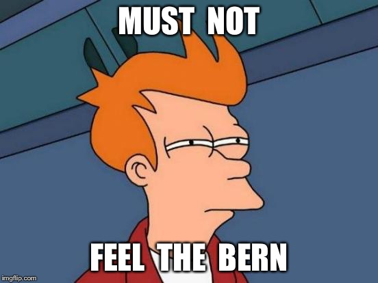 Futurama Fry Meme | MUST  NOT FEEL  THE  BERN | image tagged in memes,futurama fry | made w/ Imgflip meme maker