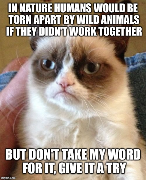 Grumpy Cat Meme | IN NATURE HUMANS WOULD BE TORN APART BY WILD ANIMALS IF THEY DIDN'T WORK TOGETHER BUT DON'T TAKE MY WORD FOR IT, GIVE IT A TRY | image tagged in memes,grumpy cat | made w/ Imgflip meme maker